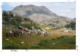 Summer Mountain Trips